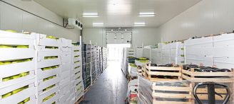 fruit and vegetables in warehouse